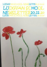 Newsletter 5 20.11.20