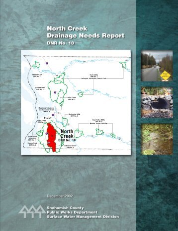 North Creek Drainage Needs Report - Snohomish County