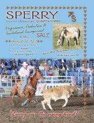 2 Foals Sell - Sperry Quarter Horses