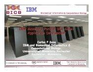 IBM Massively Parallel Blue Gene - Supercomputing Institute ...