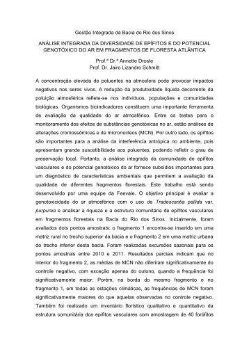 Gestão Integrada da Bacia do Rio dos Sinos ANÁLISE ... - Feevale