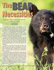 The Bear Necessities - New Hampshire Fish and Game Department