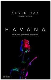 Havana FLEX - SCORE