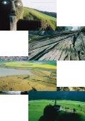 Städte von Morgen – Geologie des urbanen Raumes - Seite 5