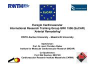 EuCAR - RWTH Aachen University