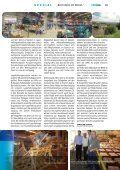 """BEM-VINDO DO BRASIL"" JUBILARE 2012 - Mosolf - Seite 5"