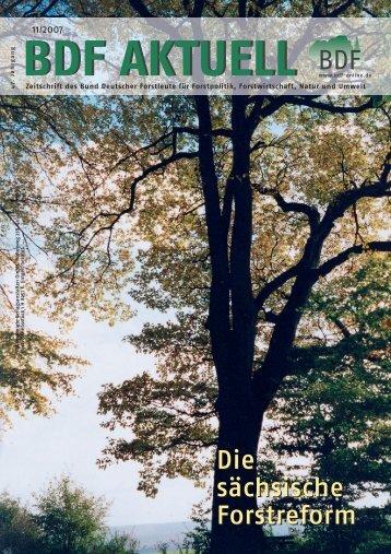 Ausgabe 11/2007 - Bund Deutscher Forstleute (BDF)
