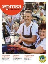 PDF-Download - Stadtwerke Döbeln GmbH