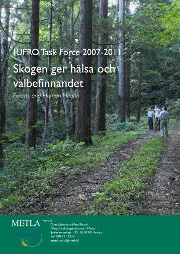 Skogen ger hälsa och välbefinnandet - Metla