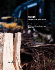 Skogen - en växande energikälla - Skogforsk