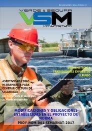 Edición 13. Diciembre 2020. Revista Verde & Segura Manufactura.
