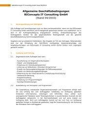 Allgemeine Geschäftsbedingungen Biconcepts IT Consulting Gmbh