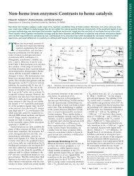 Non-heme iron enzymes: Contrasts to heme catalysis