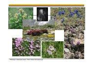 Botanischer Garten – PD Dr. Stefan Schneckenburger - Fachbereich ...