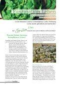 Was sind Keime, Sprossen, Keimpflanzen, Gräser? - Verein zur ... - Seite 4