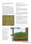 Was sind Keime, Sprossen, Keimpflanzen, Gräser? - Verein zur ... - Seite 5