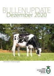 Bullenupdate Dezember 2020