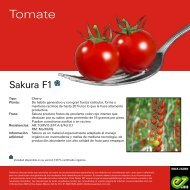Sakura_Leaflet-2020