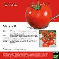Maxeza_Leaflet-2020