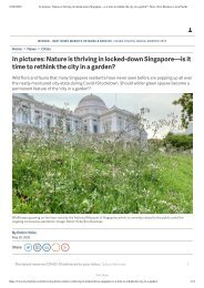 In pictures_ Nature is thriving in locked-down Singapore—is it time to rethink the city in a garden_ _ News _ Eco-Business _ Asia Pacific