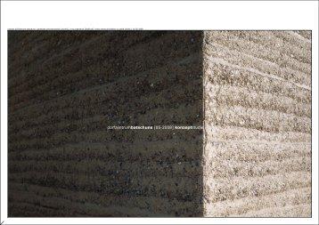 2008-05-27 dorfplatz batschuns (sm) konzept varianten mit 4 und 5.2d