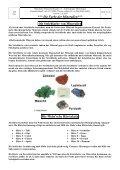 Farbe der Mineralien - Münchener Mineralienfreunde eV - Seite 3