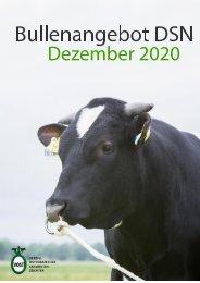 Bullenkarte DSN Dezember 2020