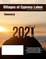 Villages of Cypress Lakes January 2021