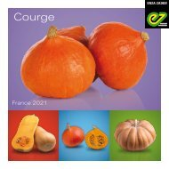 Catalogue courge 2021