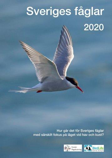 Sveriges fåglar 2020