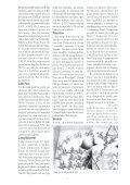 pu enn leta palestinn - Lalit Mauritius - Page 5