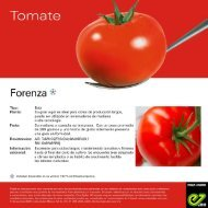 Leaflet Forenza 2020