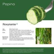 Leaflet Roxynante 2020