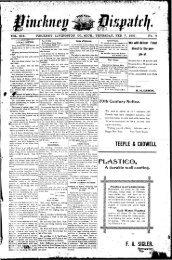 02-07-1901 - Village of Pinckney