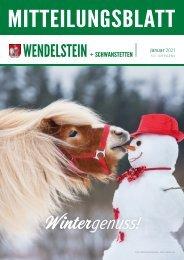 Wendelstein+Schwanstetten - Januar 2021