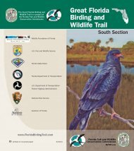 South Section Guide - Great Florida Birding Trail