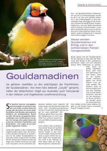 Gouldamadinen - Alles für Tiere
