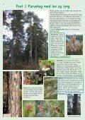 Stovnerbakken/Liastua - Norges Naturvernforbund - Page 4
