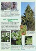 Stovnerbakken/Liastua - Norges Naturvernforbund - Page 5