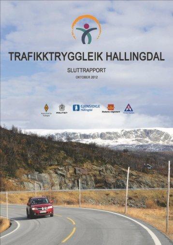 Sluttrapport - Regionrådet for Hallingdal