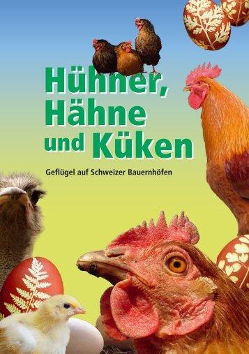Hühner, Hähne und Küken
