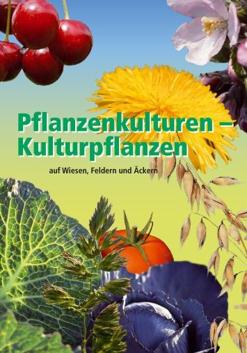 Pflanzenkulturen - Kulturpflanzen