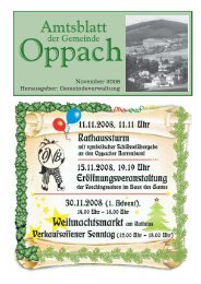 20. November 2008 - Oppach