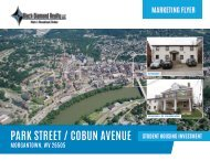 Park Street and Cobun Avenue Marketing Flyer