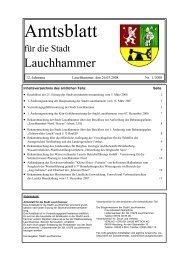 Nichtamtlicher Teil - Stadt Lauchhammer