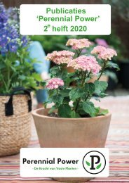 Publicaties Perennial Power 2e helft 2020