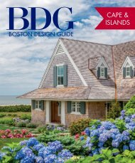 BDG Cape & Islands Design Guide 2018