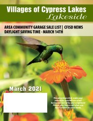 VCL Lakeside March 2021