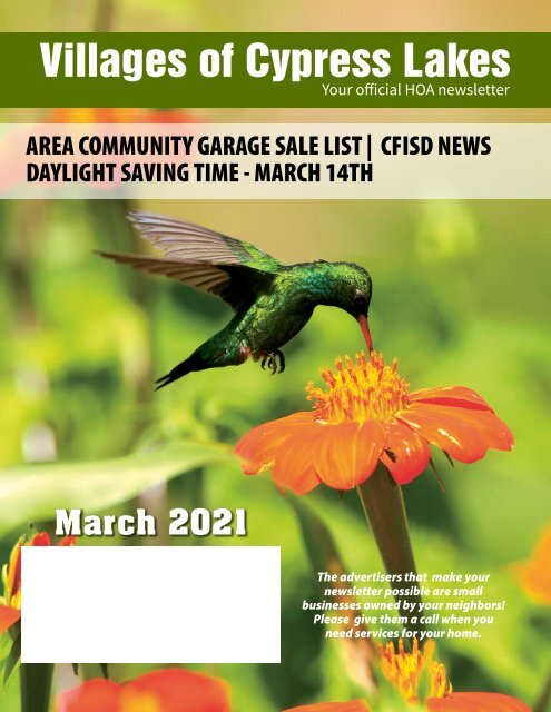 Villages of Cypress Lakes March 2021