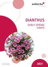 selecta Dianthus Early Spring 2021 SE